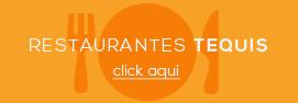 icono - boton - restaurantes tequisquiapan