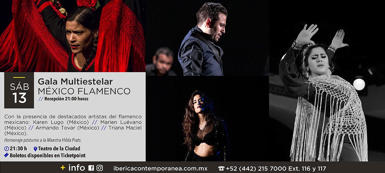 Iberica-contemporanea-3