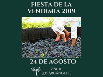 Vendimia 2019 – Viñedo Los Arcángeles