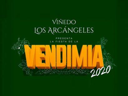 Vendimia 2020 – Viñedo Los Arcángeles