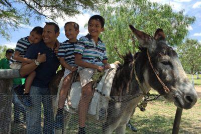 niños burro